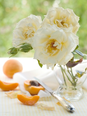 butterfly knife: Roses in vase with apricot on background. Selective focus