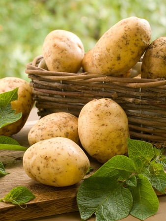 vegetable basket: Basket of fresh tasty new potatoes. Selective focus
