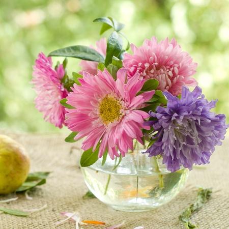 arreglo floral: Rosa y lila aster en florero de vidrio. Enfoque selectivo Foto de archivo