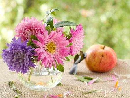 Roze en lila asters in glazen vaas. Selectieve aandacht