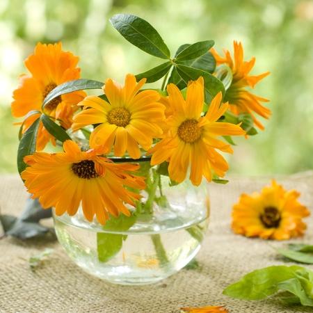 De oranje bloemen van calendula in een glazen vaas. Selectieve aandacht Stockfoto