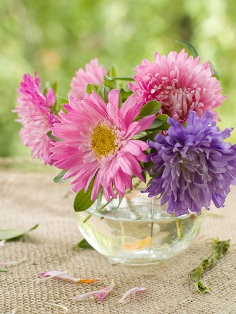 Pink and lilac asters in glass vase. Selective focus photo