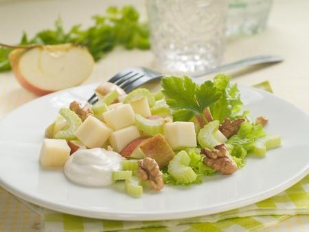 Waldorf Salat mit Käse, selektiven Fokus