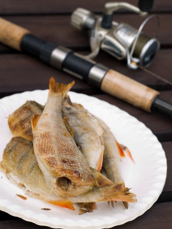 Grilled fish with fishing rod on background, selective focus photo