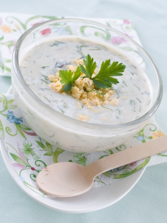 Cold yoghurt soup with dill and yolk, selective focus photo