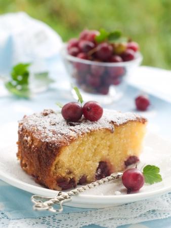 Biscuit-Kuchen mit frischen Stachelbeeren, selektiven Fokus Lizenzfreie Bilder - 14684136