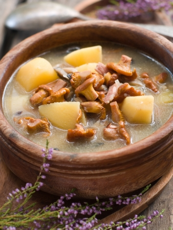 chanterelle: Soup with chanterelle and potatoes,  selective focus