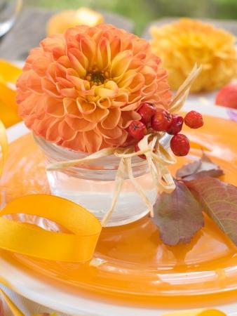 Composizione con fiori e sorbo, messa a fuoco selettiva Archivio Fotografico - 15045740