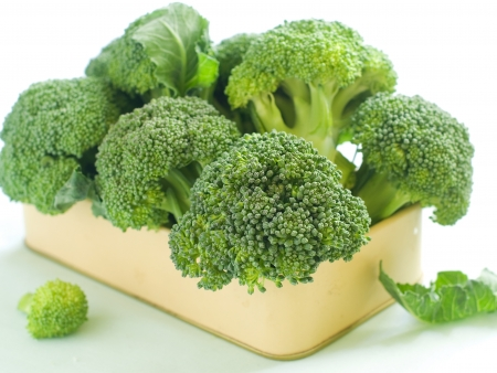 Fresh green broccoli on light background, selective focus Stock Photo
