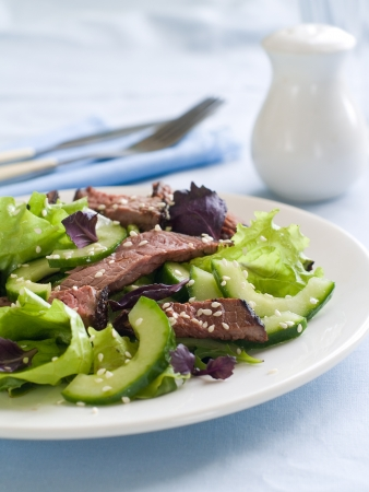 Ostrich  beef  salad with lettuce and cucumber, selective focus photo