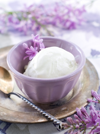 Lemon and lavender  ice cream in vintage bowl, selective focus  photo