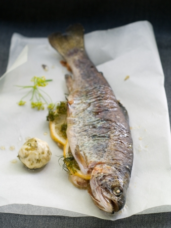 Grilled trout with lemon, dill and butter, selective focus Stock Photo - 21070402