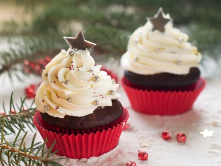 Gingerbread cupcake with christmas decoraton, selective focus Stock Photo - 23802829