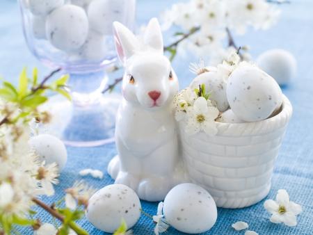 Huevo de Pascua de chocolate con flor de cerezo photo
