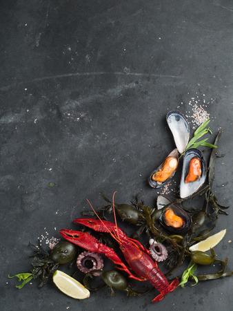 mariscos: Fondo del alimento con los mariscos, el enfoque selectivo Foto de archivo