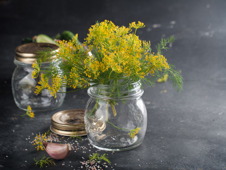 Fresh dill flower for marinate, selective focus Imagens