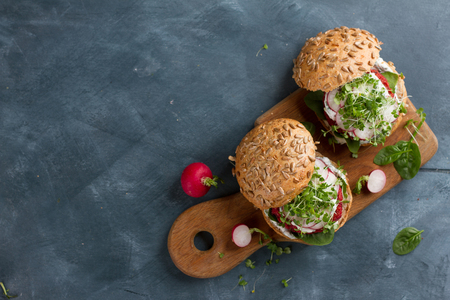 Veggie couscous beet burgers with radish and seedlings, selective focus Zdjęcie Seryjne