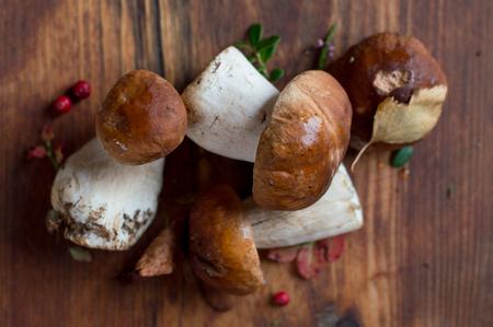 edible plant: Mushroom boletus on wooden background, selective focus