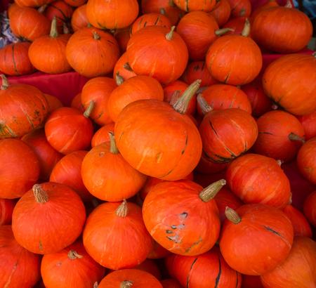 Pumkin in the market