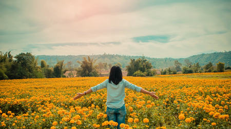 Back view of young  girl  in marigold fields, woman Stock Photo