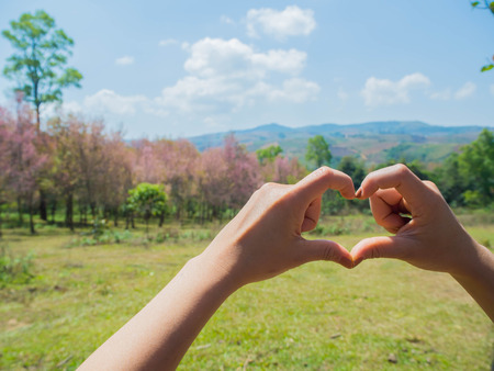 shaping: Female hands shaping a heart symbol on mountain background