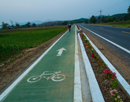 bike lane: Bike lane signs painted onto a green bike lane ( Bike lane, road for bicycles )