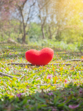 Valentines Day background with heart and fresh grass garden, red heart, hand, flower, woman