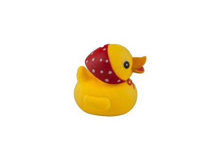 small yellow duck