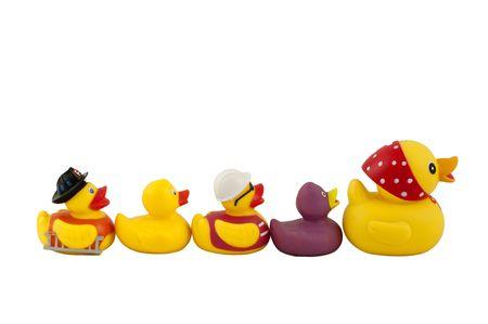 famille canard isol� sur un fond blanc Banque d'images