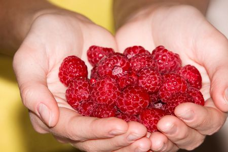 This is a close-up of the raspberries.