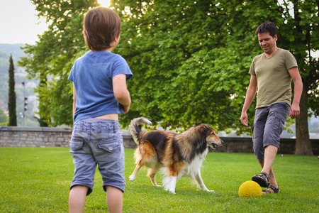 Father and son playing with a collie dog with a ball in the park Stock Photo