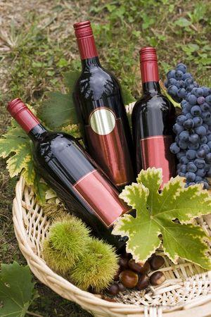 Fles rode wijn in de mand met sommige herfstvruchten.