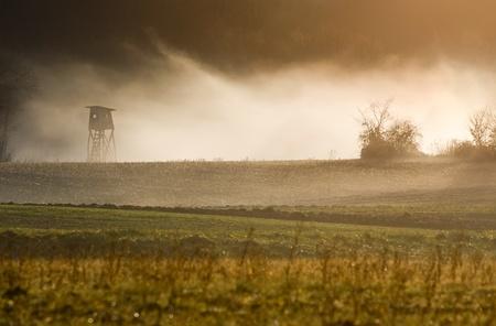 Fog rising over the autumn evening landscape. photo