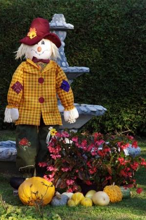 frontyard: Autumn decoration on the front-yard  Stock Photo