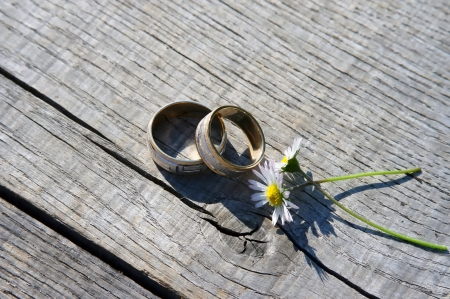 birds eye view: Wedding rings with two daisy flowers.  Stock Photo
