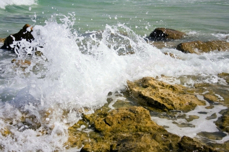 deatil: Splash of the sea against the rocks on the beach. Stock Photo