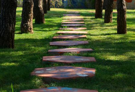 Weg van de voet in het gras, gemaakt van betonplaten.