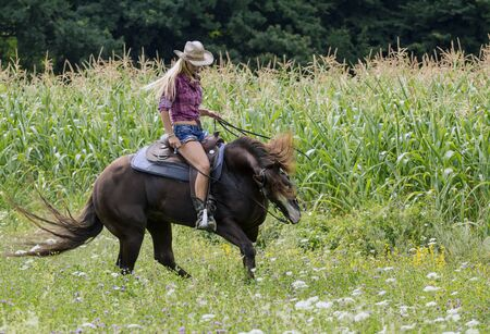 Beautiful blonde cowgirl on a horse in a field.