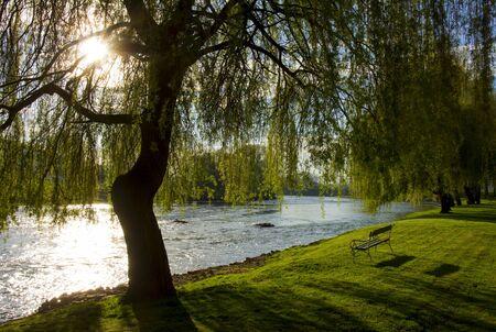 Beautiful, sunny morning by the river Krka, Slovenia