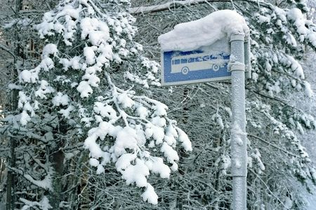 bus-stop sign under snowdrift in the forest Stock Photo - 249554