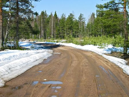 The Karelian wood spring road photo