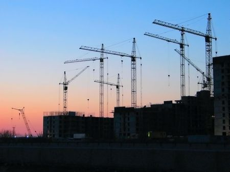 gloaming: Multiple cranes at sunset - horizontal
