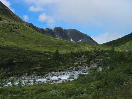 jotunheimen national park: Stream in a green valley. Jotunheimen national park, Norway.
