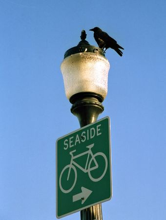 guidepost: guide-post with a bird and seaside inscription