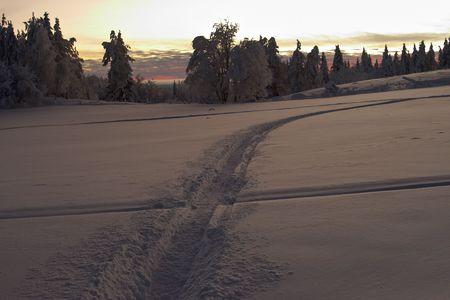trace across the snow field Stock Photo - 356987