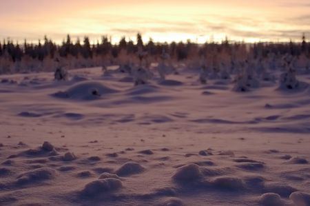 desertion: sharp snow in the foreground and the dim sunset landscape on a background