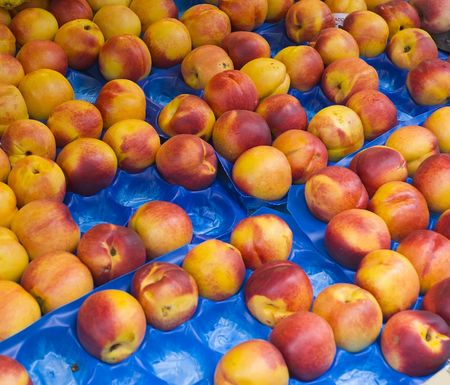 fresh nectarines at market Stock Photo - 586623