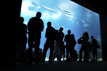 oceanarium: people silhouettes on aquarium background in Lisbon oceanarium Stock Photo