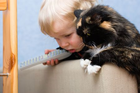The cat and cute  waiting for mice. Small DOF. Focused on cat. Stock Photo - 770442