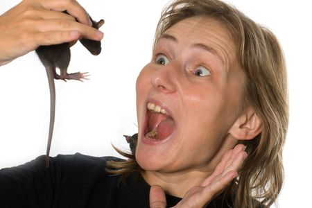 horrified: scared woman crying with horror holding little rat in her hand, isolated on white